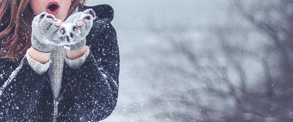 Den Winter überstehen